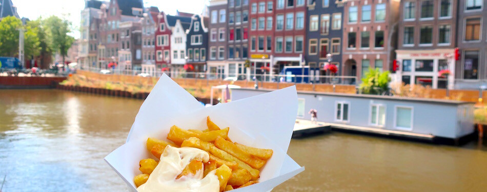 Dutch fries with mayo