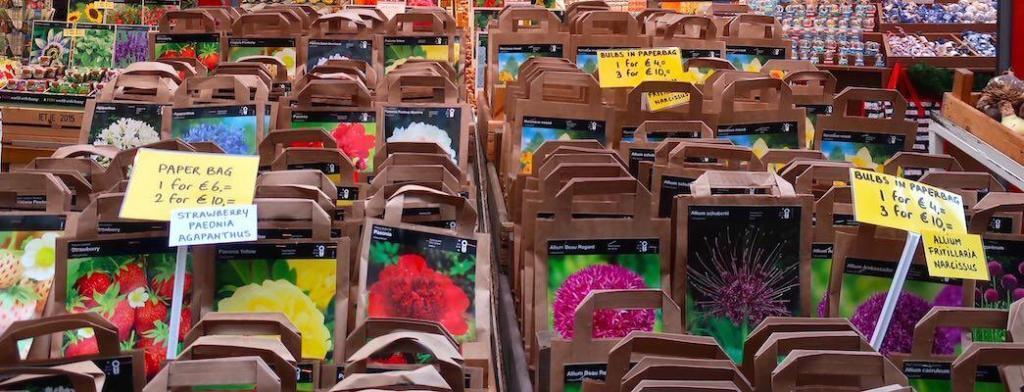Amsterdam Flower Market Online